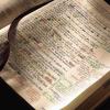 Bible Studies This Spring